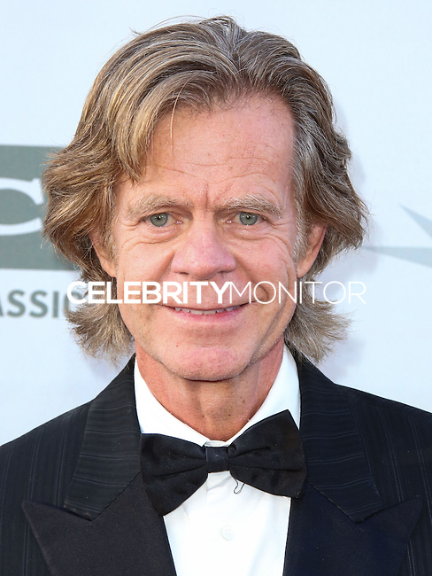 HOLLYWOOD, LOS ANGELES, CA, USA - JUNE 05: William H. Macy at the 42nd AFI Life Achievement Award Honoring Jane Fonda held at the Dolby Theatre on June 5, 2014 in Hollywood, Los Angeles, California, United States. (Photo by Xavier Collin/Celebrity Monitor)