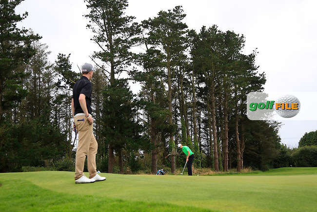 Tiarnan McLarnon (Massereene) on the 15th green during the Semi-Finals of the AIG Irish Amateur Close Championship at Tramore Golf Club on Saturday 22nd August 2015.<br /> Picture:  Thos Caffrey / www.golffile.ie