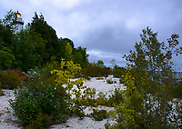 The Cana Island Light glows in the morning overcast just before dawn.  Shoreline shrubs grow where there used to be water with low lake levels, since this time, water has come back up and these shrubs are being washed away, Door County, Wisconsin