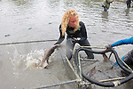 Stephanie Crawford Putting Leopard Shark Into Pen