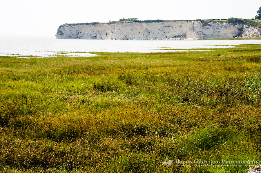 France, Talmont-sur-Gironde. White limestone cliffs.