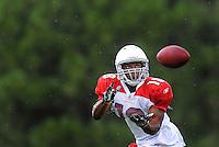 Jul 31, 2009; Flagstaff, AZ, USA; Arizona Cardinals wide receiver Michael Ray Garvin during training camp on the campus of Northern Arizona University. Mandatory Credit: Mark J. Rebilas-