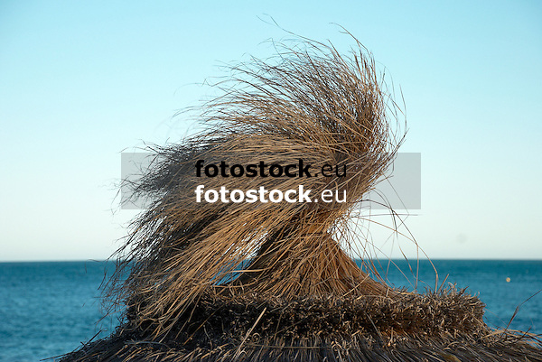 Thatched Sunshade<br /> <br /> Sombrilla de paja<br /> <br /> Strohschirm