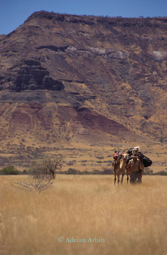 Benedict Allen  during his journey along the coast of Namibia on camels.  Damaraland, Namibia.