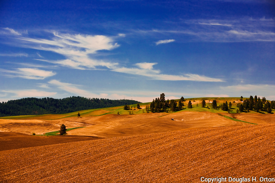 Palouse Country of Washington State, known as the heartland of wheat farming it is also a majestically scenic area well known for its rolling landscapes.  Tractor plows in distance.  Kamiak Butte, the highest point in Washington Palouse, lies in the background.  Kamiak is a wildlife preserve with camping, hiking, and picnicking.