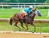 Devine Confection winning at Delaware Park on 7/4/16