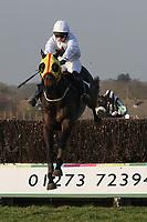 Race winner Nozic ridden by Gemma Gracey-Davison jumps the last in the Plumpton Annual Members Handicap Chase