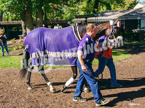 Miss Modella's last race at Delaware Park on 10/19/17<br /> wishing her a wonderful new career as a broodmare