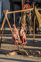 Butchered sheep in the town of Tingri in Tibet, China
