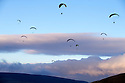 2014_11_30_PARAGLIDERS
