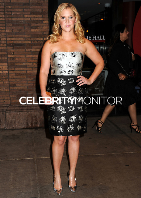 NEW YORK CITY, NY, USA - NOVEMBER 10: Amy Schumer arrives at the 2014 Glamour Women Of The Year Awards held at Carnegie Hall on November 10, 2014 in New York City, New York, United States. (Photo by Celebrity Monitor)