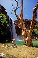 Havasupai Canyon with waterfall and pool in Arizona, USA