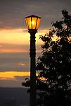 Upward view of a lamp post at night