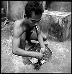 A turtle seller is tying up a turtle. The turtle is sold for 200.000 to 500.000 Rupiah or twenty to fifty bucks.