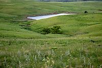 Rolling Tall Grass Prairie in the Flint Hills of Kansas.