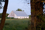 Old, faded paint barns (white and red) at dusk at a farm in rural Missouri