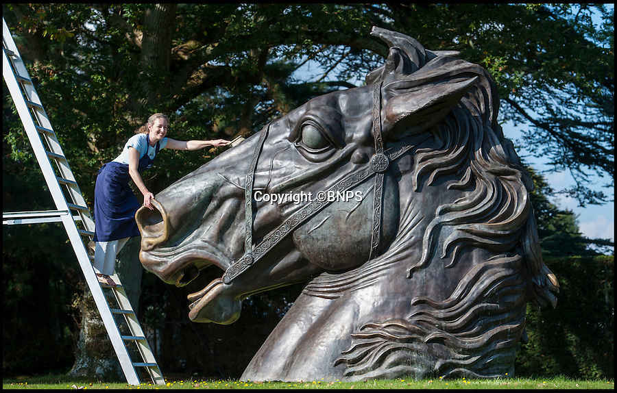 BNPS.co.uk (01202 558833)<br /> Pic: PhilYeomans/BNPS<br /> <br /> A large step up from a garden gnome...Lindsay Hoadley cleans up the enormous bronze horse.<br /> <br /> This magnificent equine sculpture is being sold at the annual Summer Place auction of garden statues near Billingshurst in West Sussex.<br /> <br /> The enormous bronze head was commissioned for Camden Lock and its flared nose bears the patina of thousands of hands brushing it for good luck in the bustling market.<br /> <br /> The striking sculpture is thought to be based on French artist David's famous painting of Napoleon crossing the alps and was created as a memorial to the famous market's origins as stables and a horse hospital owned by Pickfords removals.<br /> <br /> Those who have a garden big enough will have to splash out £25,000 to secure the 15 ft high bronze statue.