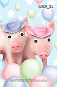 Samantha, ANIMALS, REALISTISCHE TIERE, ANIMALES REALISTICOS, funny, photos+++++Party Pigs master,AUKP51,#a#