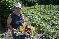 Europe/France/Aquitaine/40/Landes/ Lencouacq:  Violette Valés - agricultrice et restauratrice récolte ses  fleurs comestibles, herbes aromatiques et légumes oubliés  dans  Jardin Potager de la Ferme Auberge du Jardin de Violette