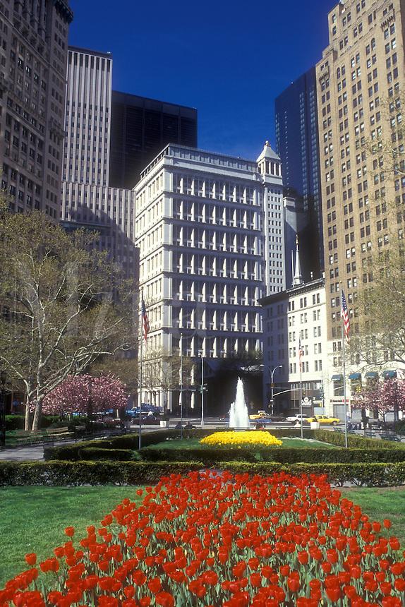 AJ1233, New York City, Manhattan, New York, N.Y.C., Red tulips adorn City Hall Park in Lower Manhattan in the spring in New York City, New York.