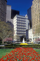 AJ1233, New York City, Manhattan, New York, N.Y.C., Red tulips adorn City Hall Park in Lower Manhattan in the spring in New York City, New York.