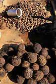Belem, Brazil. Brazil nuts; whole pod which contains about 12 to 20 nuts, and pile of nuts with shells.