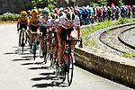 The peloton led by UAE Team Emirates during Stage 2 of Tour de France 2020, running 186km from Nice Haut Pays to Nice, France. 30th August 2020.<br /> Picture: ASO/Alex Broadway | Cyclefile<br /> All photos usage must carry mandatory copyright credit (© Cyclefile | ASO/Alex Broadway)