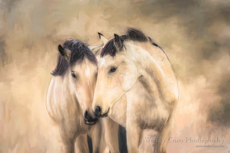 Pair of wild mares outside of Las Vegas, Nevada, standing for a casual portrait, fine art
