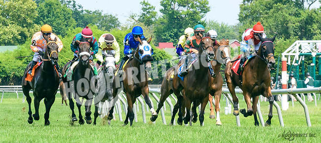 Proud Reunion winning at Delaware Park on 7/15/17