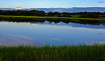 Jamestown Tidal marsh land with snowy egrets in Jamestown, RI on Tuesday, Aug. 16, 2011.