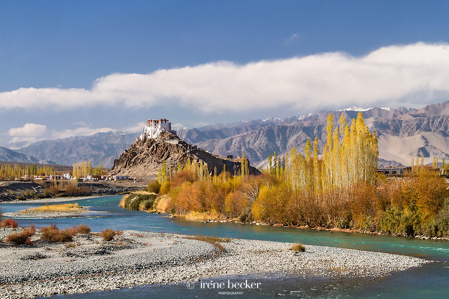 Stakna Monastery from opposite bank of river Indus.  Leh, Jammu and Kashmir,  India