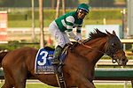 ARCADIA, CA   FEBRUARY 3 : #3 Accelerate, ridden by Victor Espinoza, in the stretch of the San Pasqual Stakes (Grade ll) on February 3, 2018 at Santa Anita Park in Arcadia, CA.(Photo by Casey Phillips/ Eclipse Sortswire/ Getty Images)