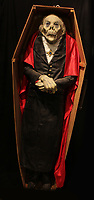 BNPS.co.uk (01202 558833)<br /> AdamPartridge/BNPS<br /> <br /> A model of Dracula in a coffin<br /> <br /> A vast collection of 'weird and wonderful' memorabilia from a music venue that hosted early Beatles gigs has emerged for sale for close to £50,000.<br /> <br /> Lathom Hall in Liverpool was one of the best known clubs on the Merseybeat music scene in the late 1950s and early 1960s.<br /> <br /> Among their regular bands were the Beatles, although at that time they were known as the Silver Beets.<br /> <br /> Since those days the hall has adapted and is now an entertainment venue crammed full of pop culture memorabilia.