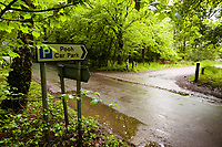 The Pooh Carpark, near Pooh Bridge in Ashdown Forest, Sussex, UK, May 19, 2017. Picturesque Ashdown Forest stretches across the countries of Surrey, Sussex and Kent, and is the largest open access space in the South East of England. It is famous as the geographical inspiration for the Winnie the Pooh stories and is popular with fans of the characters.