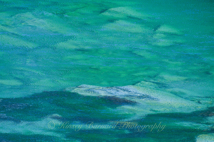 &quot;RIVER REVELRY&quot;<br />