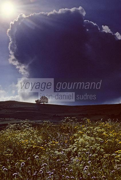 Europe/France/Auvergne/15/Cantal/env de Cheylade: Ciel d'orage sur la vallée