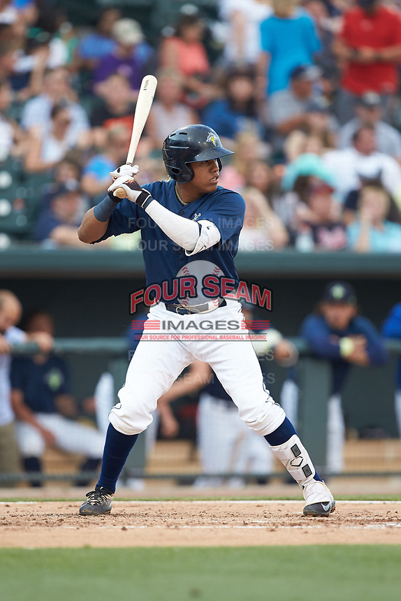 Milton Ramos (24) of the Columbia Fireflies at bat against the Charleston RiverDogs at Spirit Communications Park on June 9, 2017 in Columbia, South Carolina.  The Fireflies defeated the RiverDogs 3-1.  (Brian Westerholt/Four Seam Images)