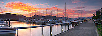 Marlin Marina at dawn.  Cairns, Queensland, Australia