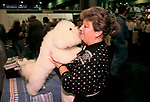'CRUFTS', PEANUTS KISSING HIS MUM, MRS JEANNET DEANE. HER BICHON FRISES KENNEL NAME IS ' JUBAL FRAGANT SNOW OF PRYDEL'., 1991