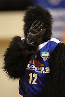 The Saints mascot during the National basketball league match between the Wellington Saints  and Taranaki Mountainairs at TSB Bank Arena, Wellington, New Zealand onFriday, 9 April 2010. Photo: Dave Lintott / lintottphoto.co.nz
