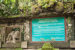 Monkey Forest, Ubud, Bali, Indonesia;