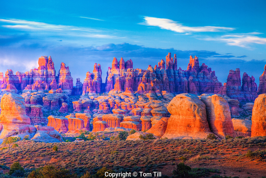 The Needles, Canyonlands National Park, Utah, Needles District, Pinnacles of Cedar Mesa sandstone