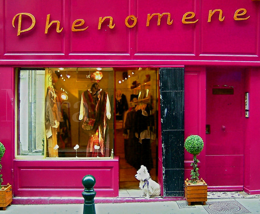The Phenomene boutique in Aix-en-Provence, France.