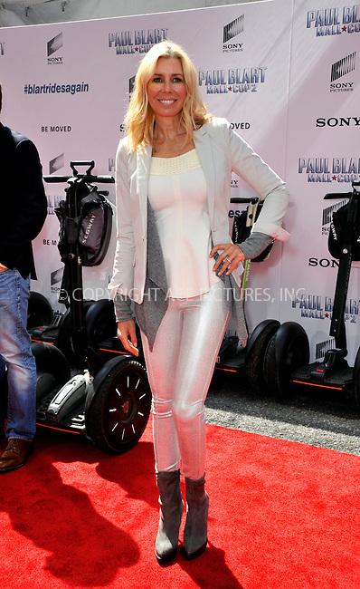 WWW.ACEPIXS.COM<br /> <br /> April 11 2015, New York City<br /> <br /> Aviva Drescher arriving at the 'Paul Blart: Mall Cop 2' New York Premiere at AMC Loews Lincoln Square on April 11, 2015 in New York City.<br /> <br /> By Line: Curtis Means/ACE Pictures<br /> <br /> <br /> ACE Pictures, Inc.<br /> tel: 646 769 0430<br /> Email: info@acepixs.com<br /> www.acepixs.com