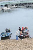 NWA Democrat-Gazette/FLIP PUTTHOFF <br /> High school anglers get their fish ready to weigh Jan. 14 2017 at Prairie Creek park on Beaver Lake.