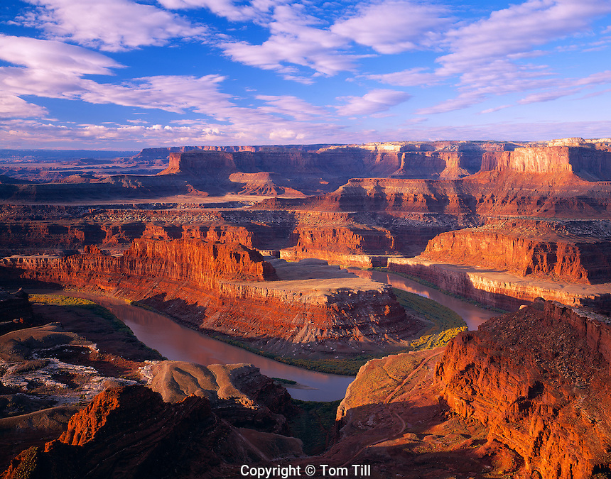 Morning light at Dead Horse Point State Park, Utah   Colorado River Canyons   Canyonlands National Park beyond    The Gooseneck