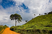 Jeceaba_MG, Brasil...Estrada terra na paisagem rural de Jeceaba...The land road in the rural landscape in Jeceba...Foto: JOAO MARCOS ROSA /  NITRO