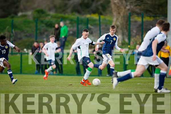 Jesse Stafford-Lacey in action for Ireland against Scotland in Killarney on Thursday night