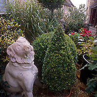 A detail of a garden with a stone figure of a lion and clipped topiary shrubs in pots.