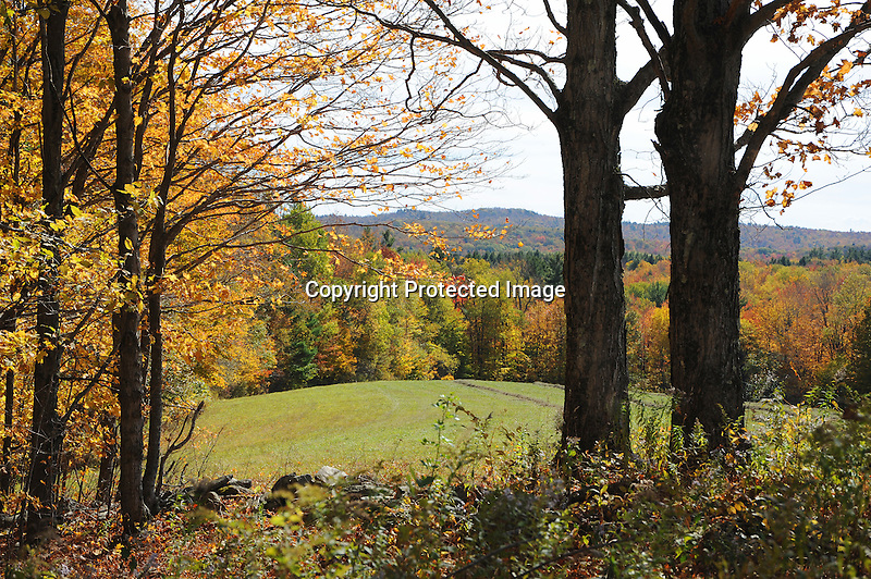 View of Distant Hills and Colorful Foliage during Fall Season in Rural Alstead, New Hampshire USA
